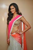 Shubra Aiyappa glamorous in half saree-thumbnail-15