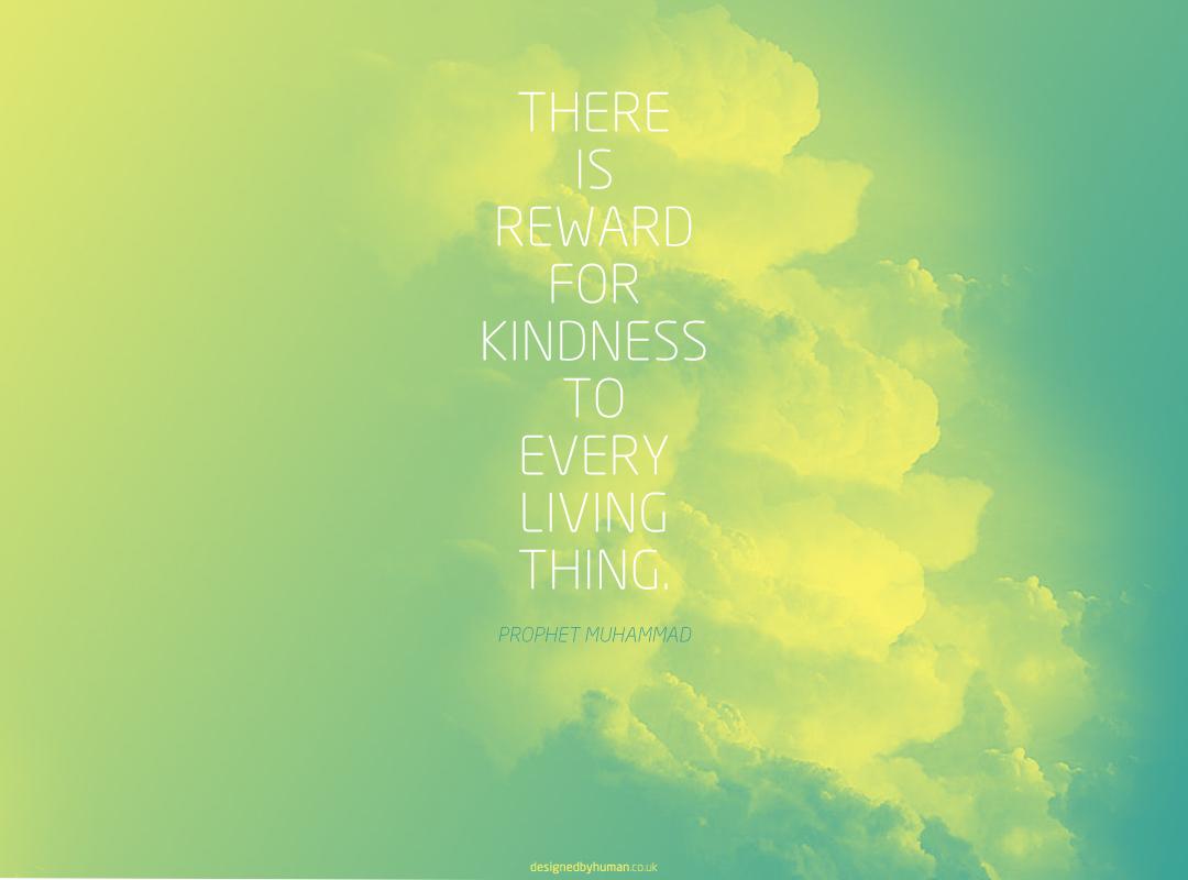 http://2.bp.blogspot.com/--EtTU-GviL4/T17FJM-XyZI/AAAAAAAAAtQ/IrJ6GbO5NJc/s1600/kindness.jpg