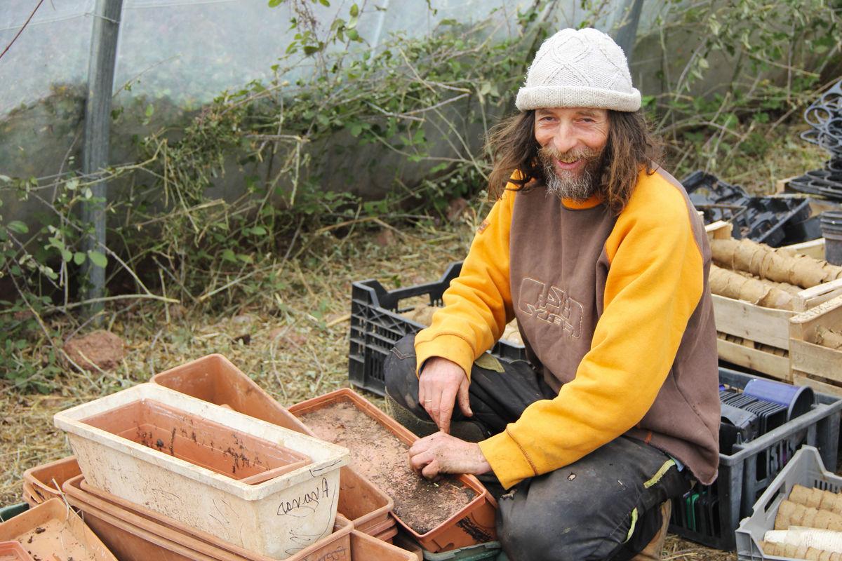 Permaculture faire pousser des l gumes sans eau c 39 est possible - Manguier resistant au froid ...