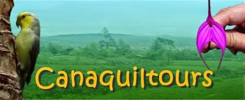 Grupo turístico Canaquiltours