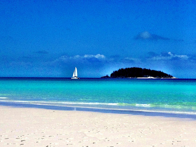 The view from Whitehaven Beach