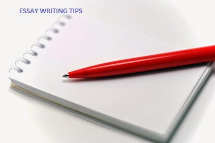 Best essay writing service 2014