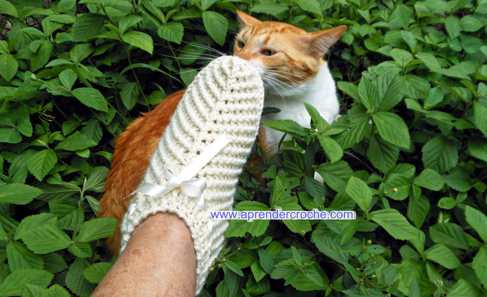 aprender croche pantufas mostra gatos Judelau e Jeremias cama pet para cães e gatos dvd loja curso de croche edinir-croche