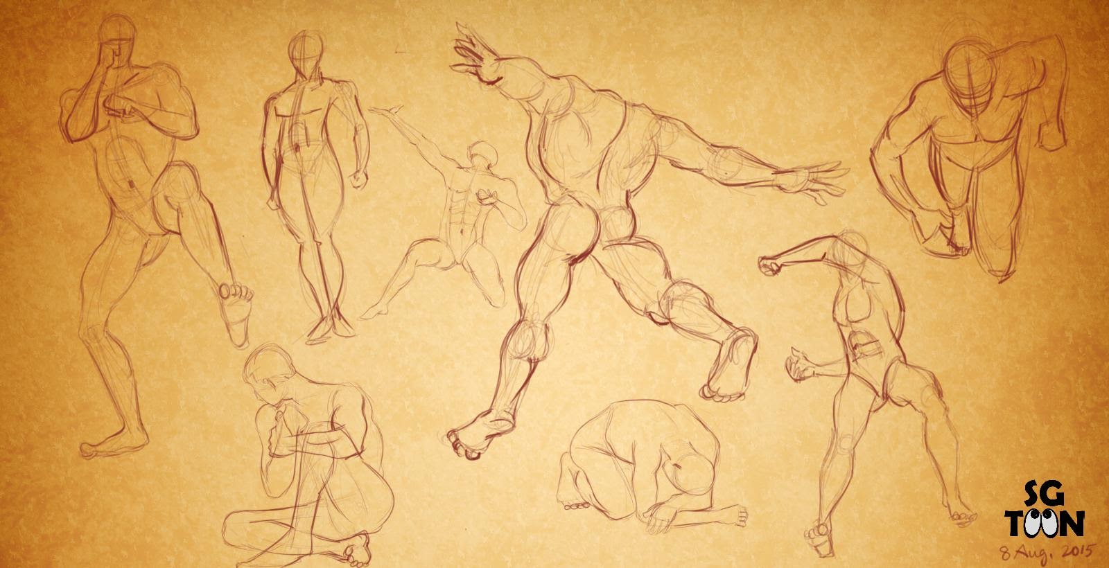 Human Anatomy Drawing And Study For Animation Animation Artist Blog