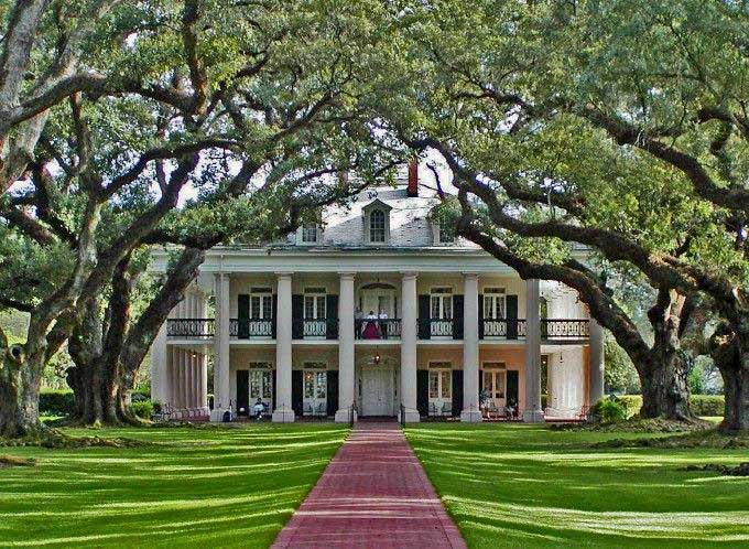 Hibiscus house the live oak in the south for 1800s plantation homes