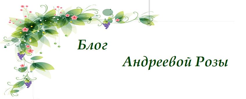 Блог Андреевой Розы