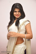 alekya hot photos alekhya hot saree stills
