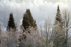 Talvi tuli...