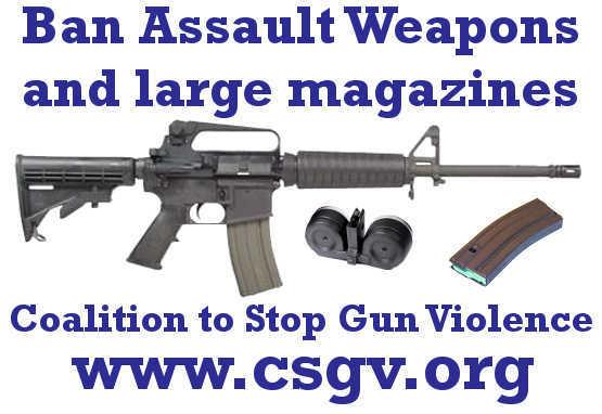 gun, gun accident, gun control, gun death, gun suicide, gun violence, NRA