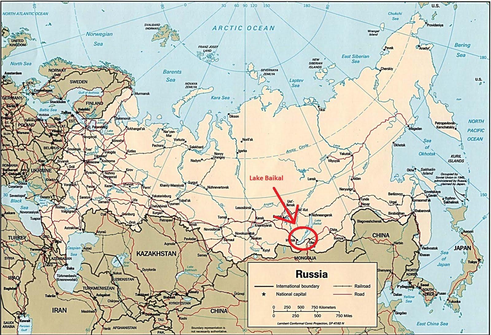 adventure a bold usually risky undertaking Back to Siberia 3