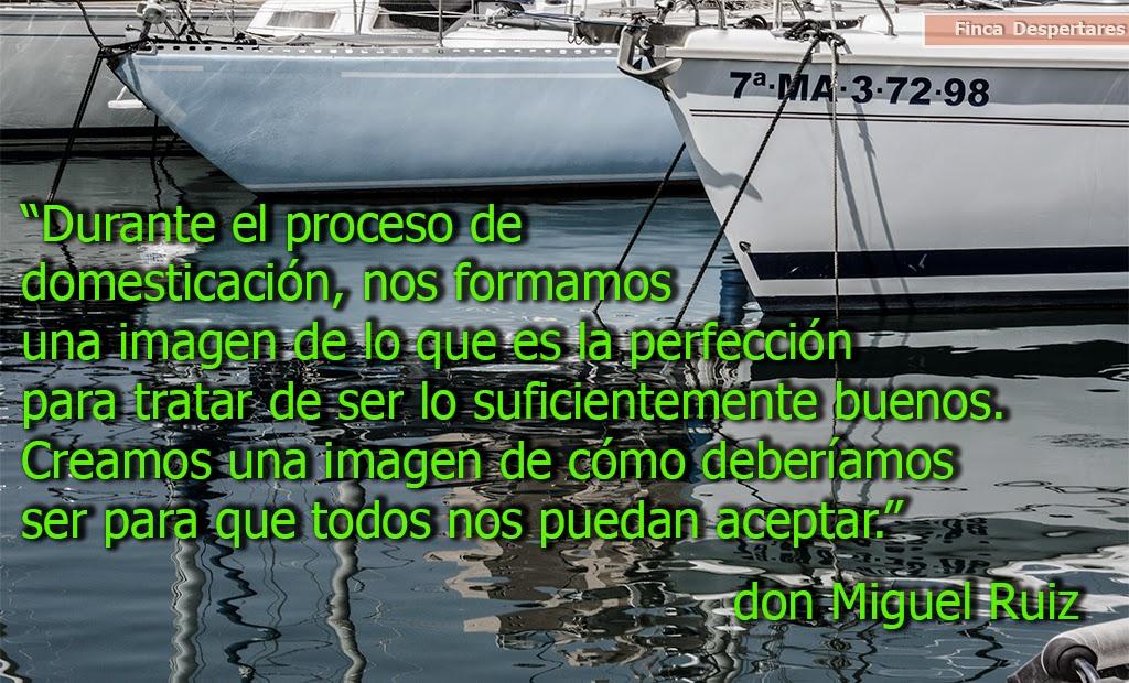 Finca Despertares - don Miguel Ruiz