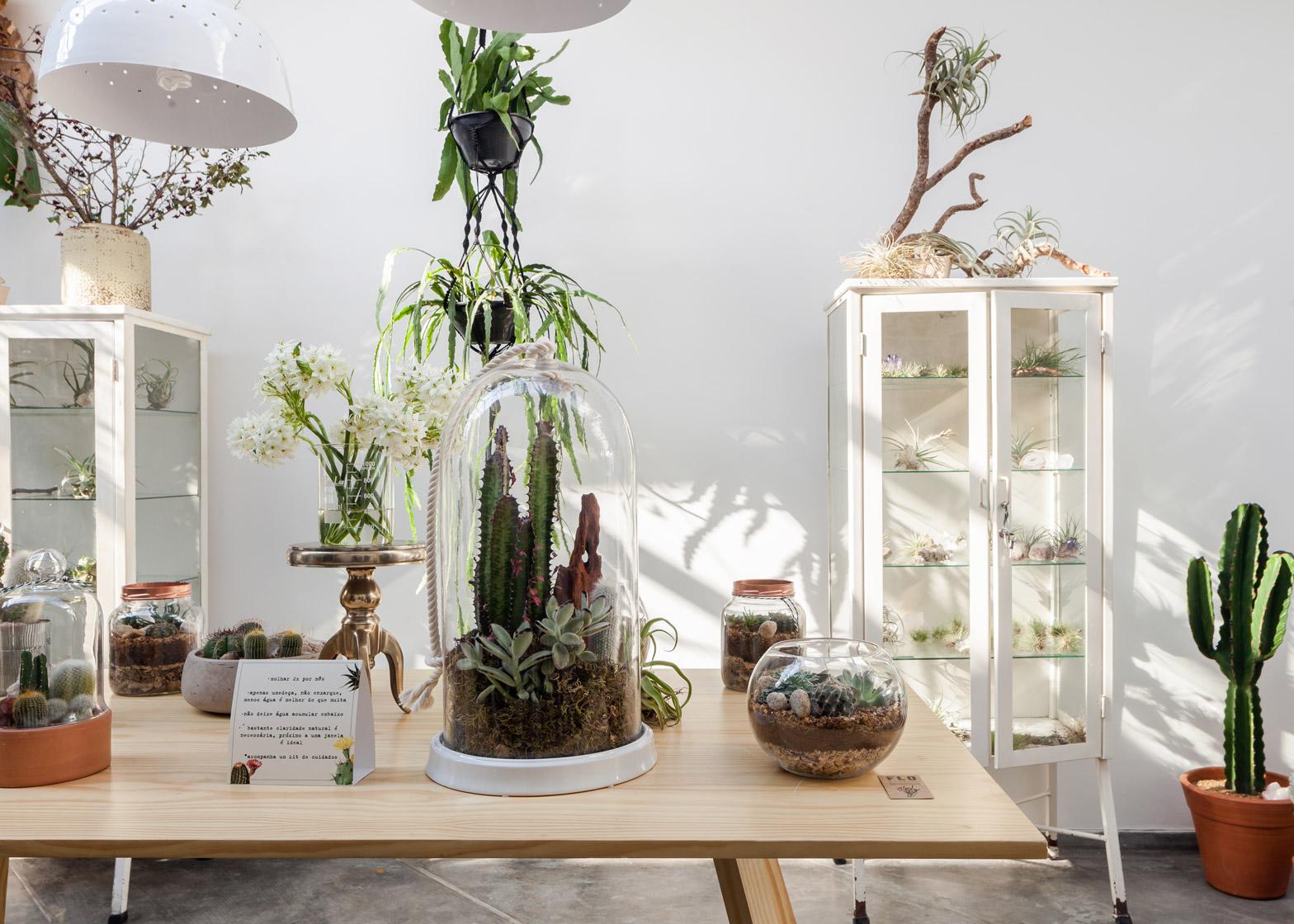Molto Negozio Atelier di fiori e piante a San Paolo by Epicentro | ARC  MC53