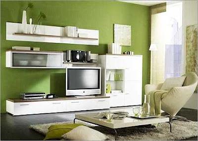 Showcase Design In Living Rooms