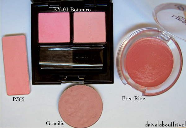 Suqqu Nuancing Cheeks EX-01 Botaniro blush comparison