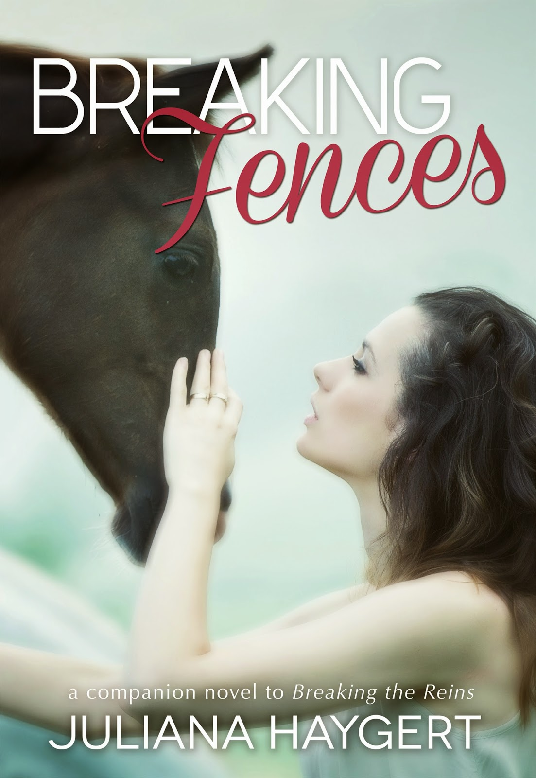 Cover Reveal – Breaking Fences