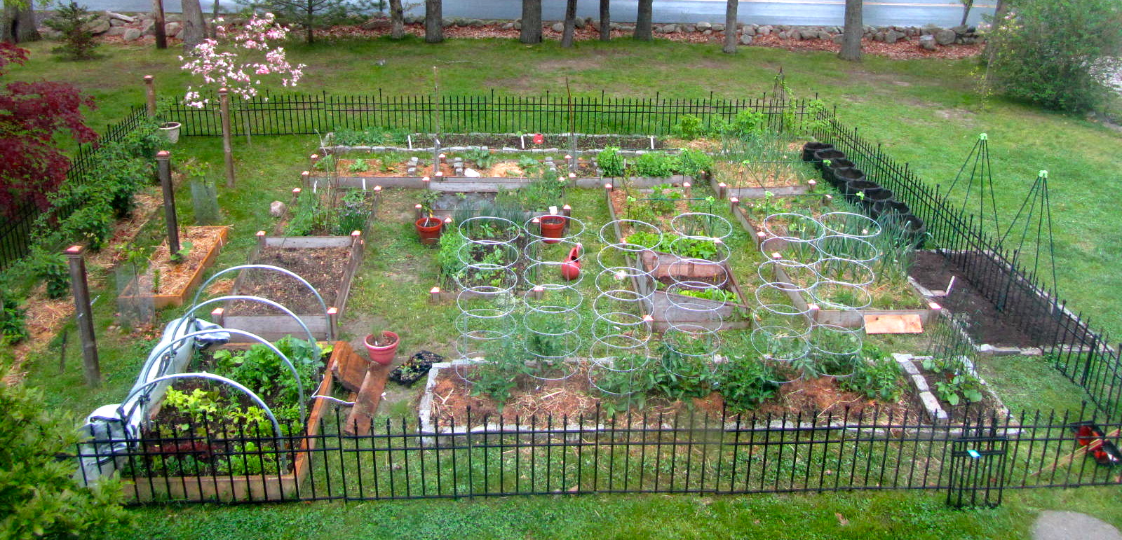 How my garden grows garden plans for Large vegetable garden