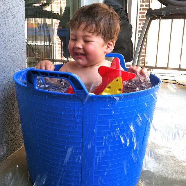 New York City Family Stick Your Baby In A Bucket How To