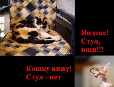 Приколы индексации Яндексом. Яндекс, стул, ищи. Кошку вижу, стул нет.