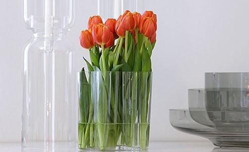 fjorn scandinavian 75 years of alvar aalto the iittala aalto vase. Black Bedroom Furniture Sets. Home Design Ideas