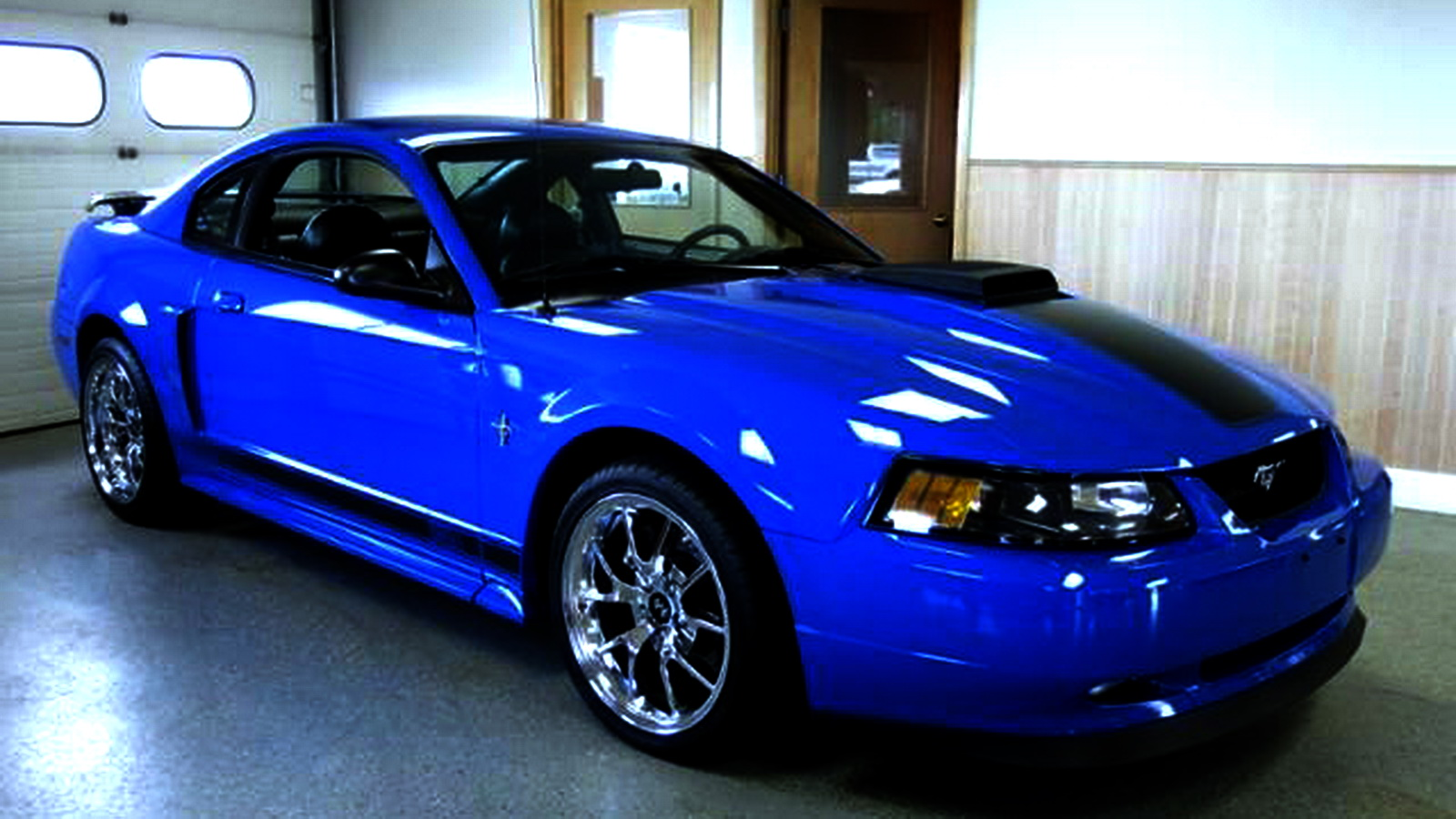 2004 Mustang Mach 1 Specs Image Gallery  HCPR