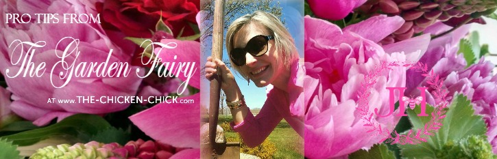 Pro tips from the garden fairy weed warfare the chicken Channel 7 better homes and gardens recipes