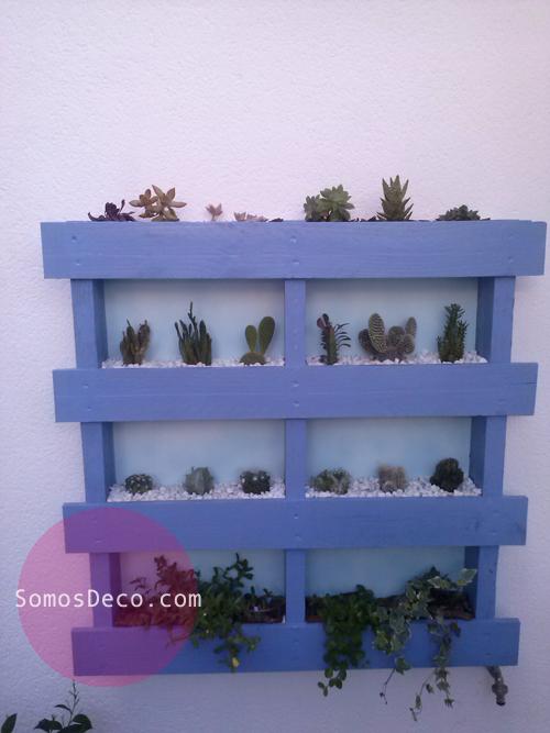 jardin en un palet
