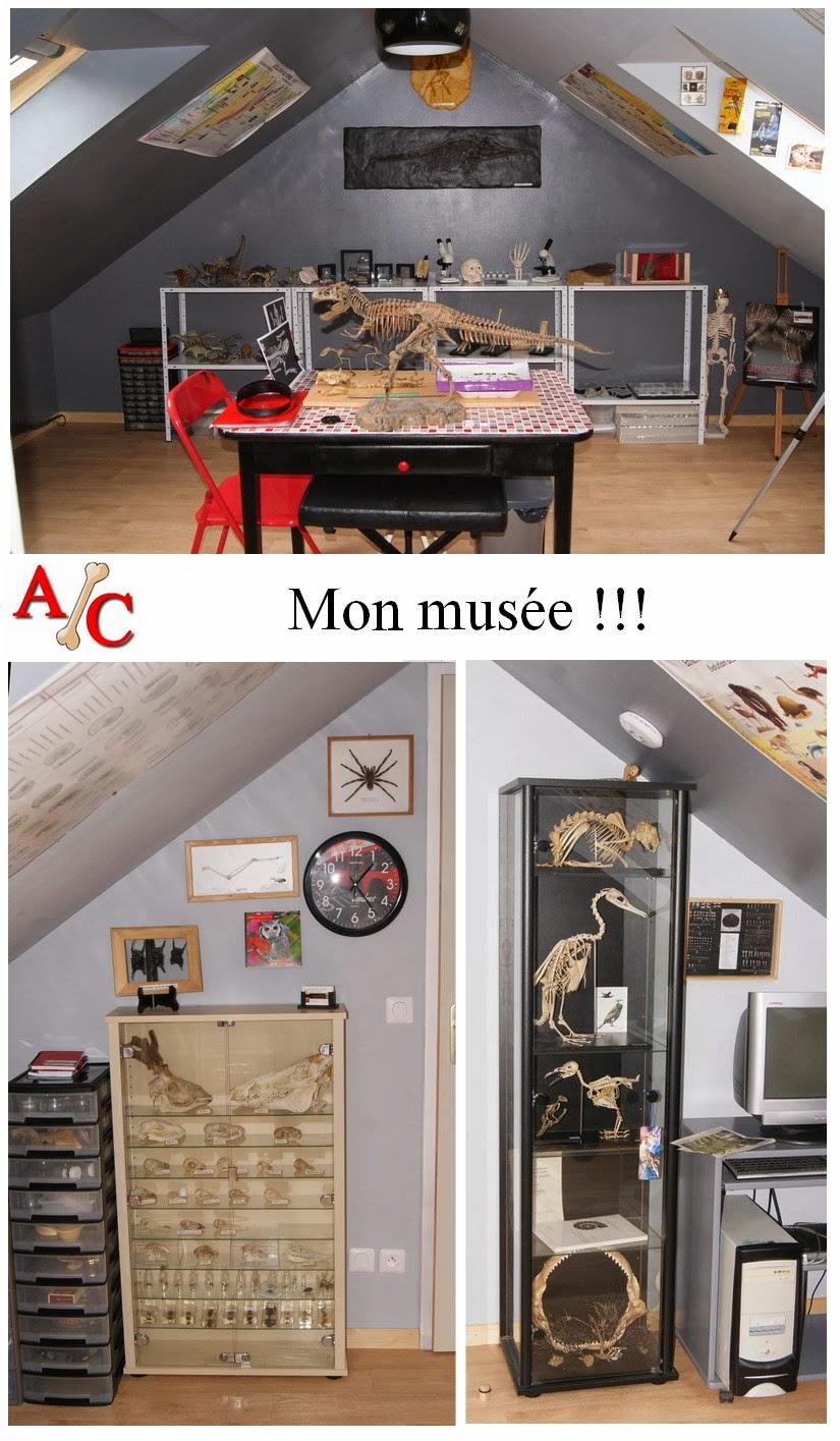 Mon musée!