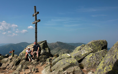 Dumbier summit cross with border collie