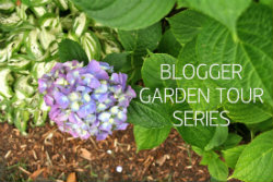 Blogger Garden Tour Series