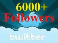 6000+ twitter followers