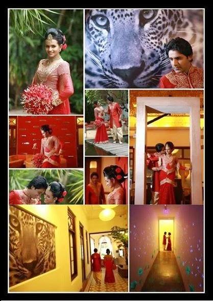 http://picture.gossiplankahotnews.com/2014/03/saranga-disasekara-umali-homecoming.html