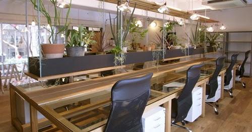 Oficina publica saludable feng shui c mo usar la energ a de las plantas para armonizar en - Humidificar el ambiente ...