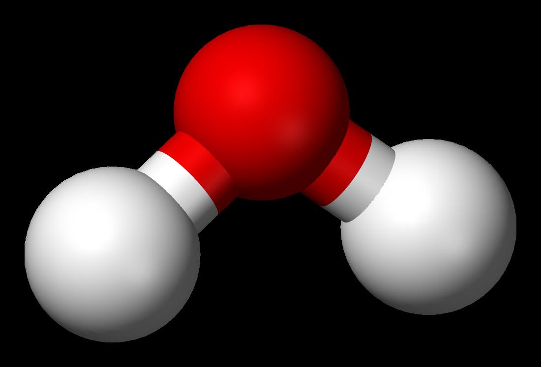 Water molecule essay