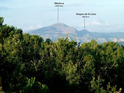 El Montcau des de dalt de Les Costes