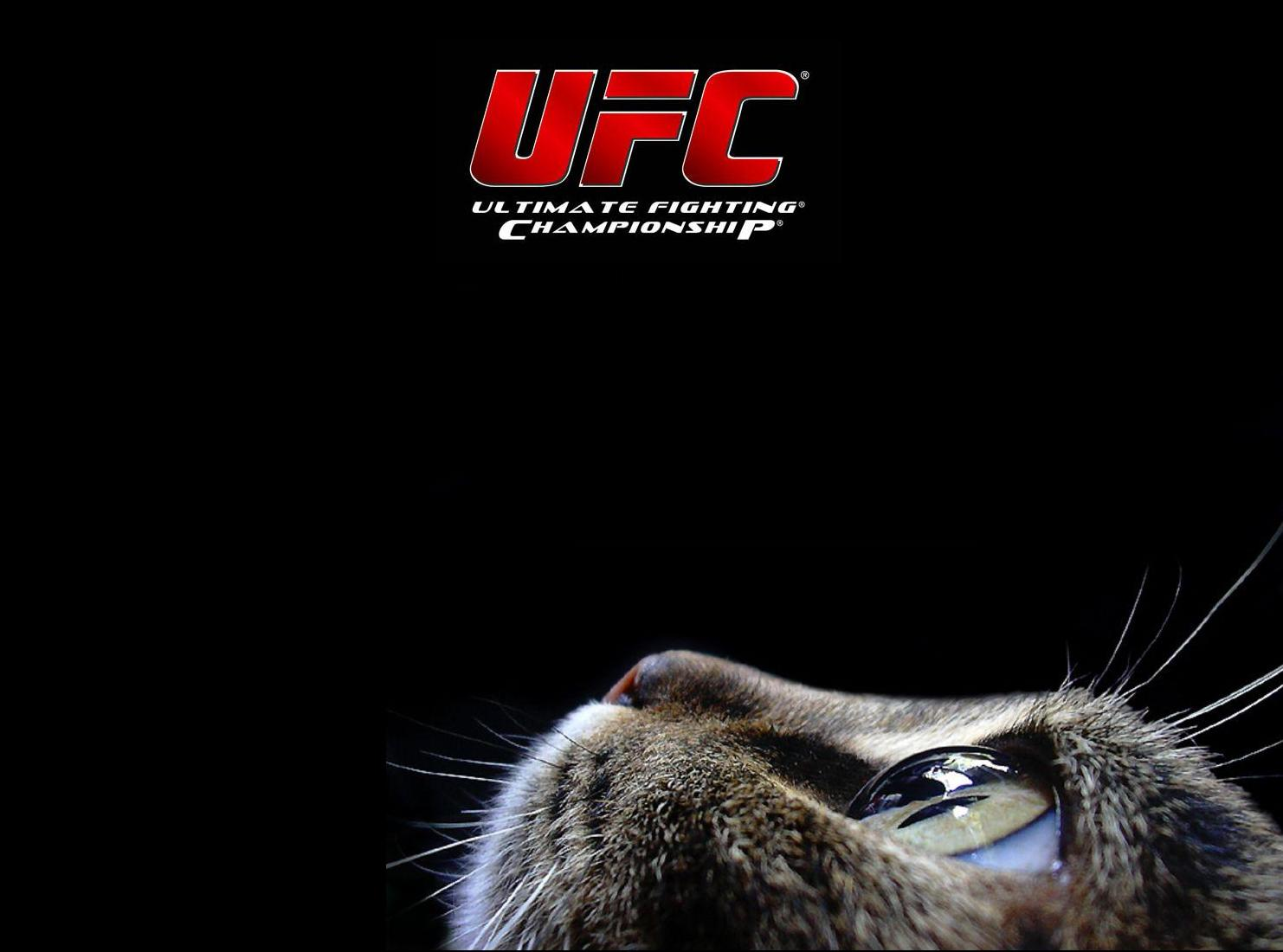 http://2.bp.blogspot.com/--Jd0H7hFnPg/T8qaz_8-ytI/AAAAAAAAACk/8siK2eYMQaU/s1600/ufc+ultimate+fighting+championship+logo+title+cat+mma+mixed+martial+arts+wallpaper+background.jpg