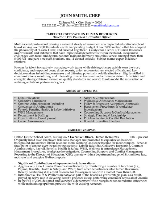 executive resume examples melbourne resumes great resumes fast sales executive resume sample executive resume samples professional