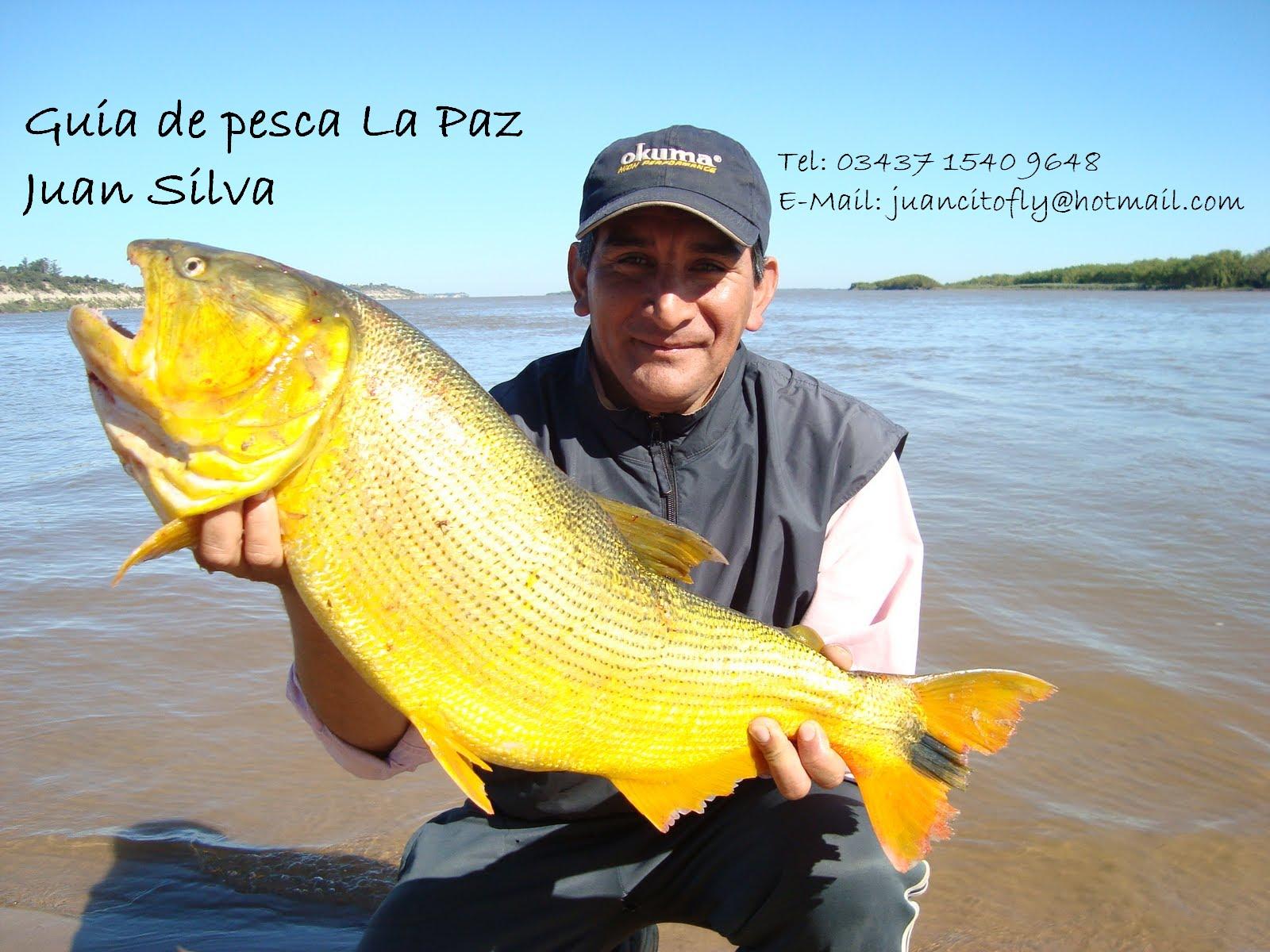 Guia de Pesca La Paz