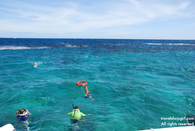 Snorkeling St Croix Us Virgin Islands