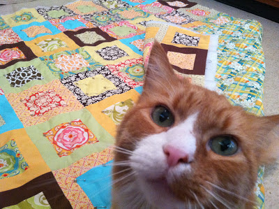cat and michael miller quilt