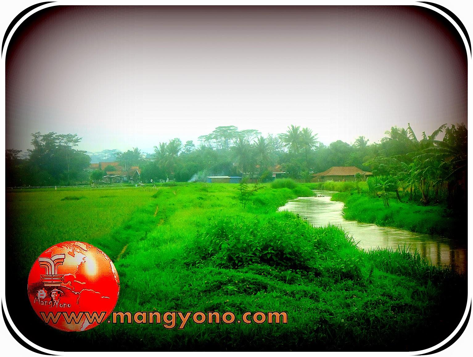 Hantu Lokal Lulun Samak. Waktu saya kecil kalau berenang di sungai diwanti wanti kalo liat tiker mengapung jangan di ambil.