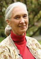 Breve Biografía de Jane Goodall. Mujeres que hacen la historia. Biografia de Jane Goodal