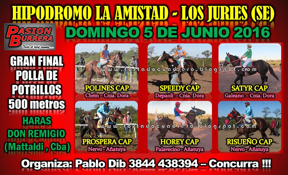 LOS JURIES 5 - POTRILLOS 500
