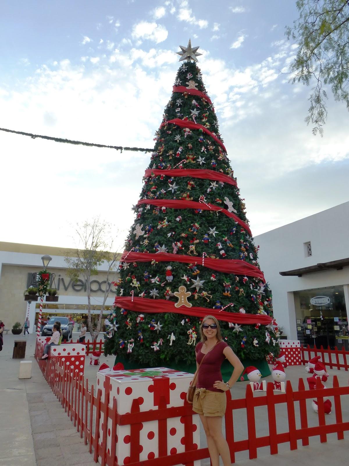 Mit weltwärts nach Mexiko: 2012