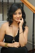 Tanishka Glam Photo shoot in Black-thumbnail-10