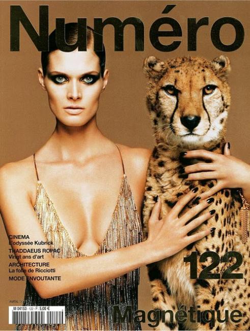 Numero Cheetah Cover