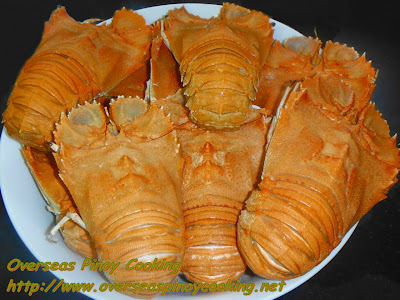 Pitik, Slipper Lobster
