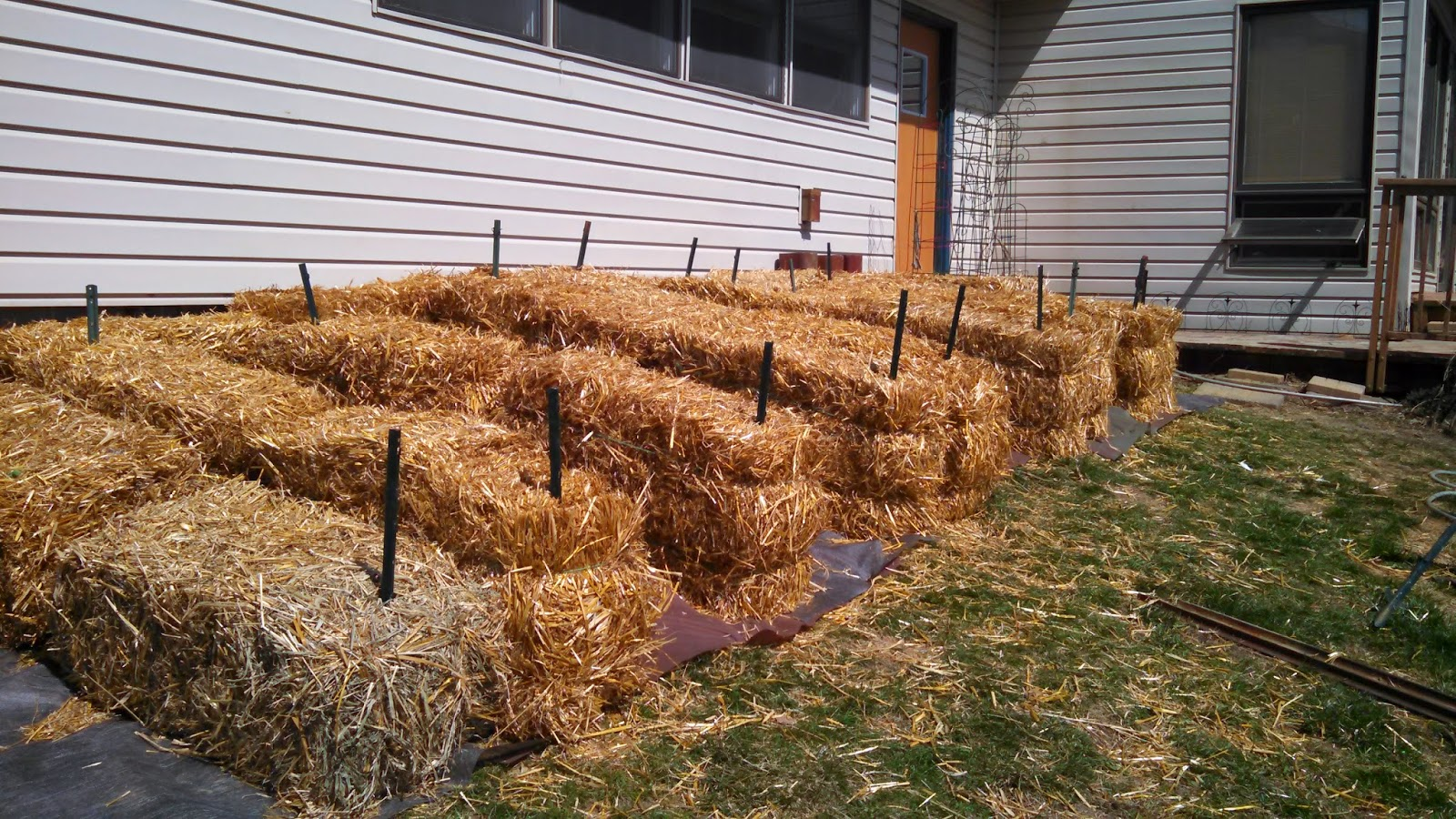 Straw Bale Garden- Before Planting