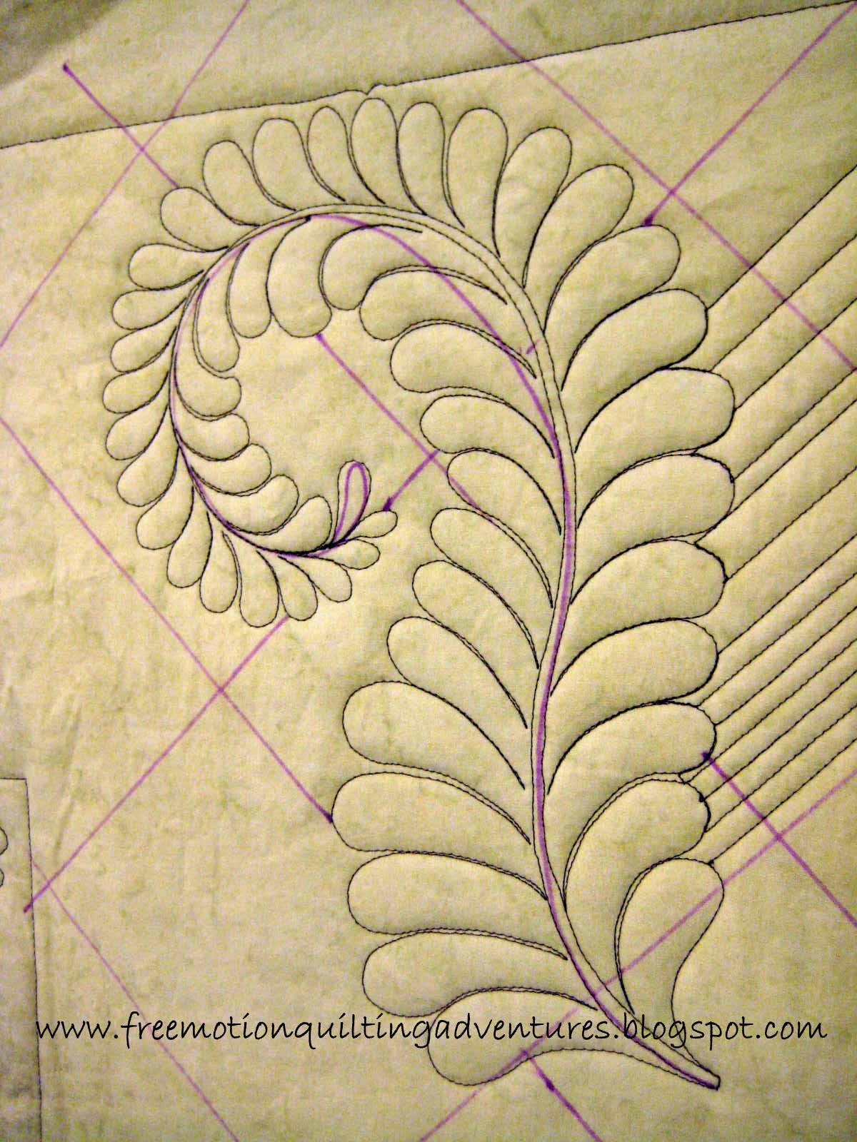 Amy s Free Motion Quilting Adventures: Video: A Free Motion Feather