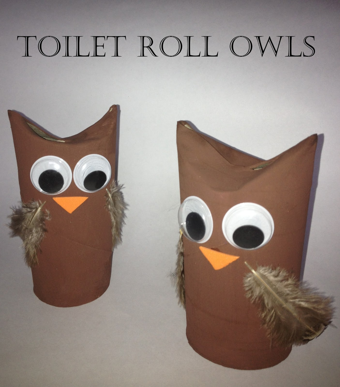 Me and my shadow loo roll crafts for Toilet paper tube owls