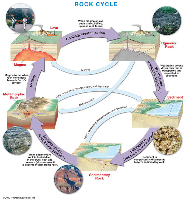 6th grade science 1st six weeks week 3 the rock cycle review and label rock cycle diagram ccuart Images